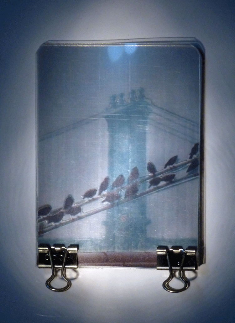 Art in Binder Clips: Manhatten Birds